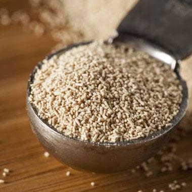 Дріжджі для зернової браги