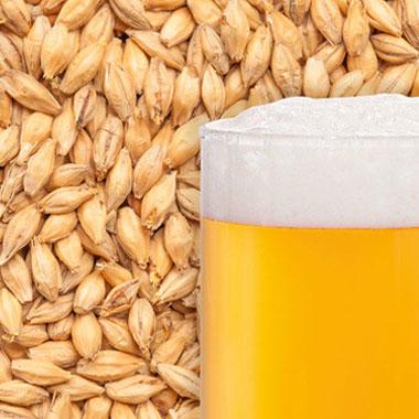 Пивний солод Best Wheat Malt