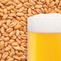 Солод пшеничнийBest Heidelberg Wheat Malt