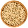 Cолод пшеничний
