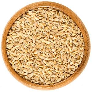 Солод пшеничний